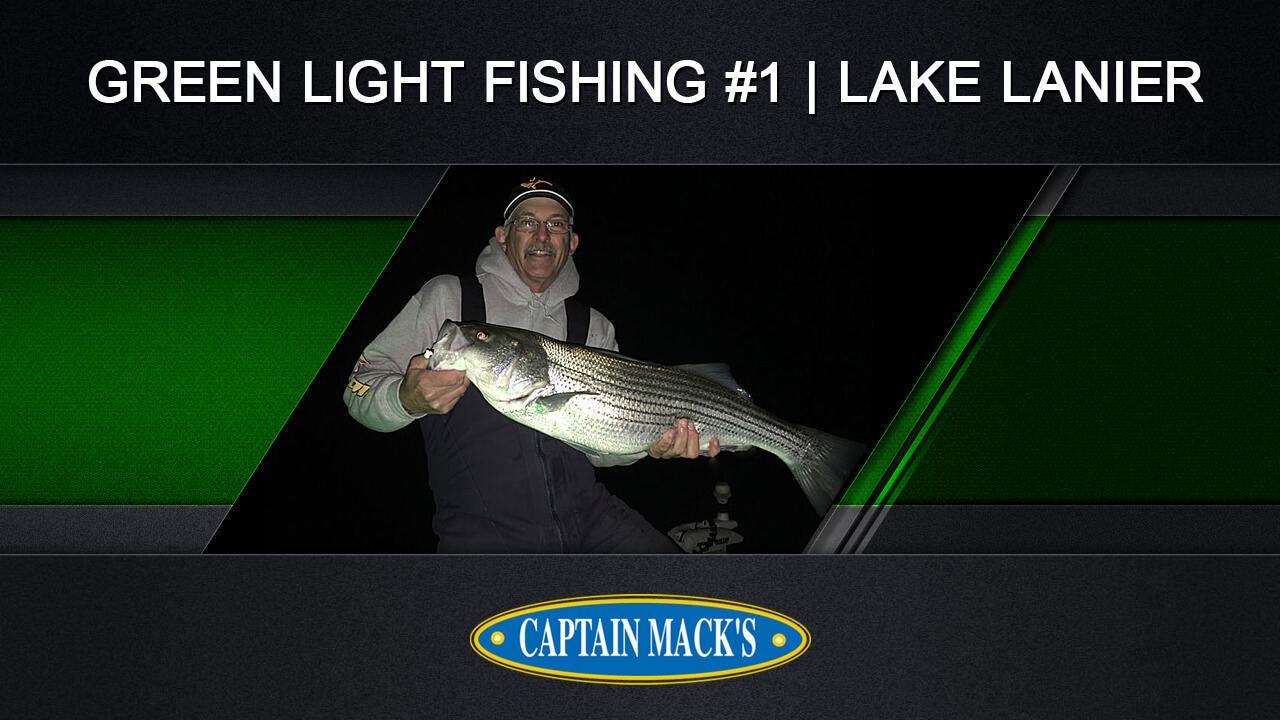 Spotted bass captain mack 39 s for Fishing report lake lanier