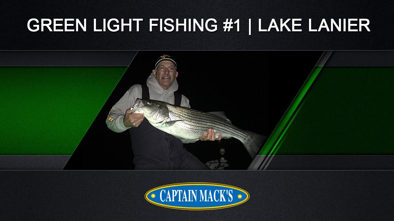 Green Light Fishing 1