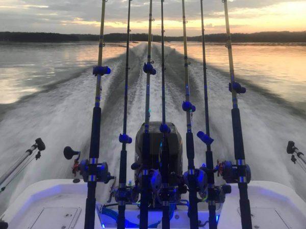 Fishin Clips